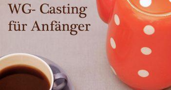 wg-casting-fuer-anfaenger